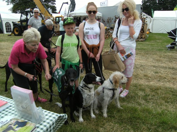 Tendring Show 019
